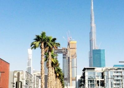 Palm Fixing System, City Walk – Dubai